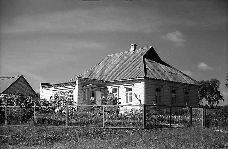 Будинок із с.Петриківка