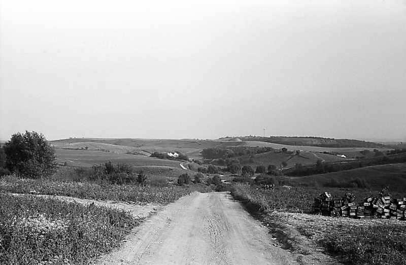 1980 р. Дорога від Хотова до Лісників