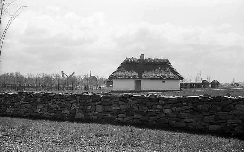 1981 р. Загальний вигляд з тилу, від церкви