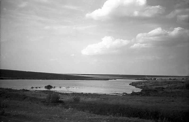 1981 р. Краєвид зі ставком біля…