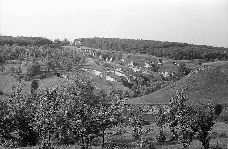 1982 р. Краєвид з ярами біля Ходосівки