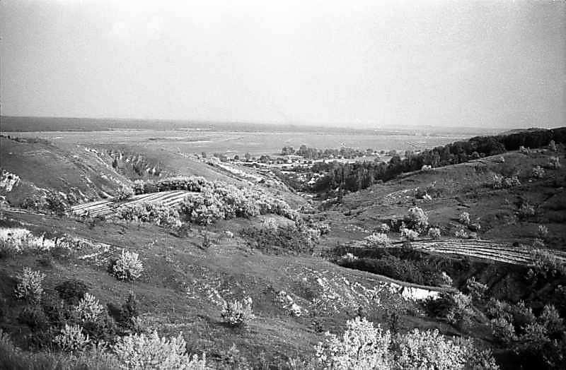 1982 р. Яр біля Ходосівки