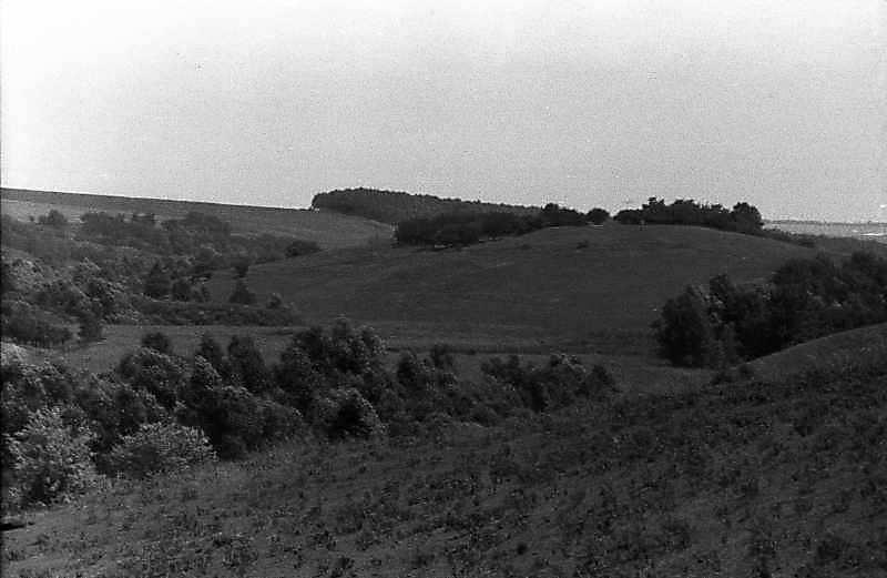 1983 р. Краєвид з балкою біля…