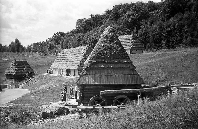 1983 р. Загальний вигляд на тлі садиби…