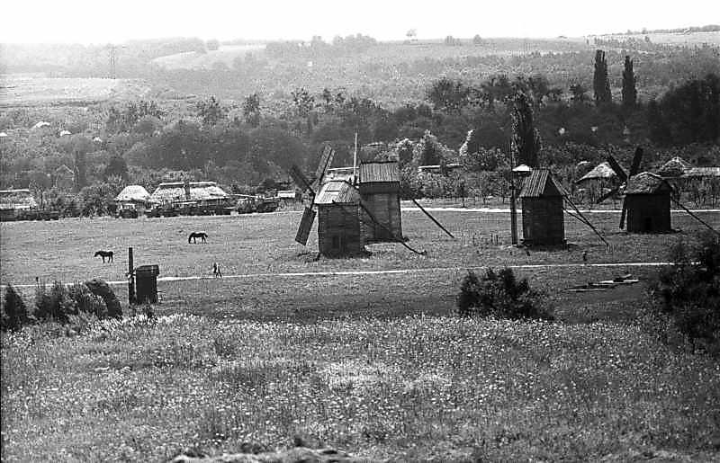 """1983 р. Загальний вигляд групи вітряків з півночі, із зони """"Карпати"""""""