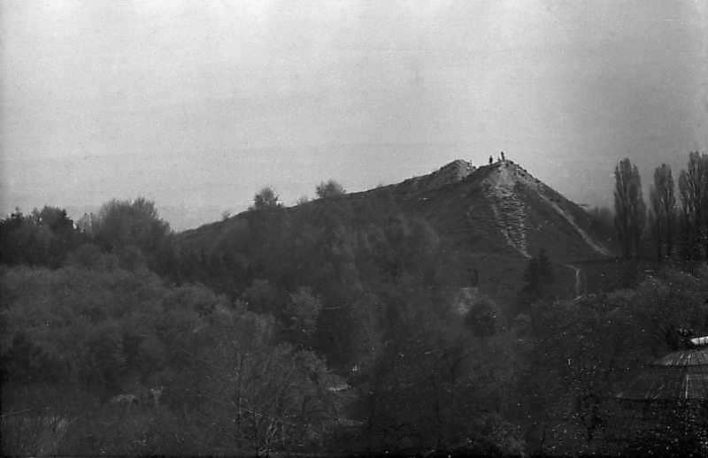 1984 р. Краєвид