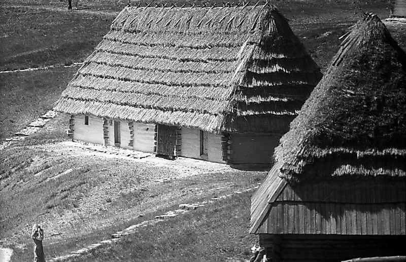 1984 р. Загальний вигляд (праворуч – дах млина із с.Пилипець)
