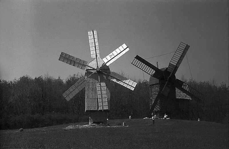 1984 р. Вітряки з Нурова і Скаргівки