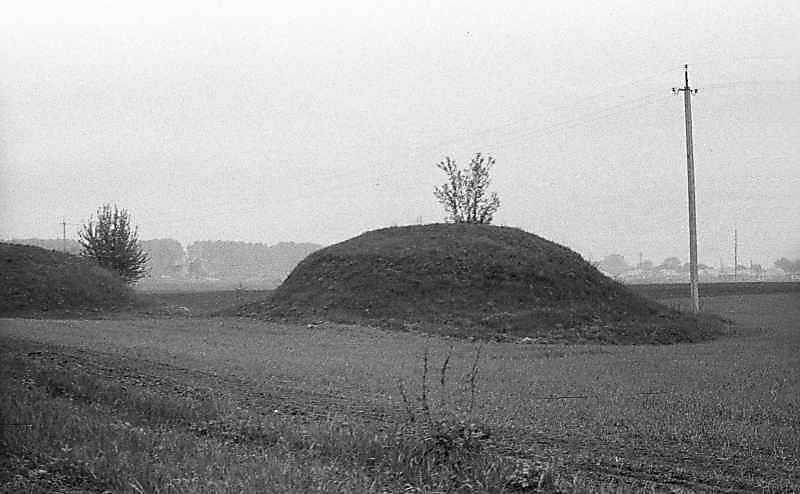 1984 р. Курган на південній околиці