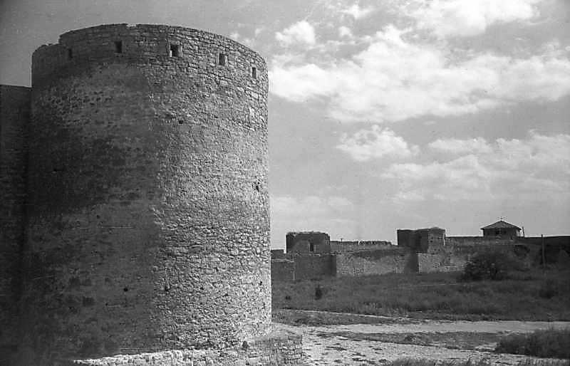 1984 р. Загальний вигляд з північного заходу на тлі башт 31, 32, 1