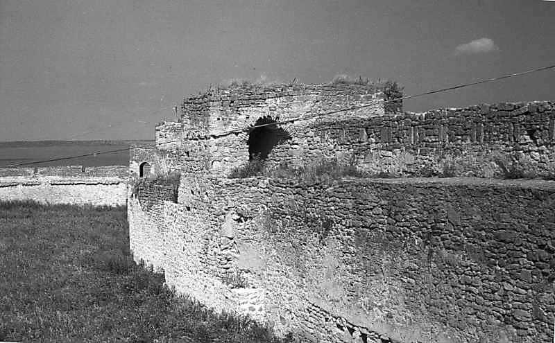 1984 р. Загальний вигляд з південного заходу, з середнього муру
