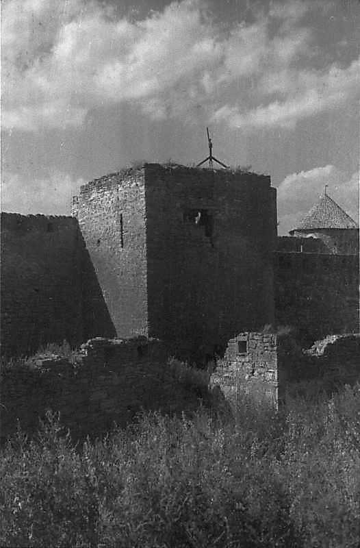1984 р. Загальний вигляд з південного сходу