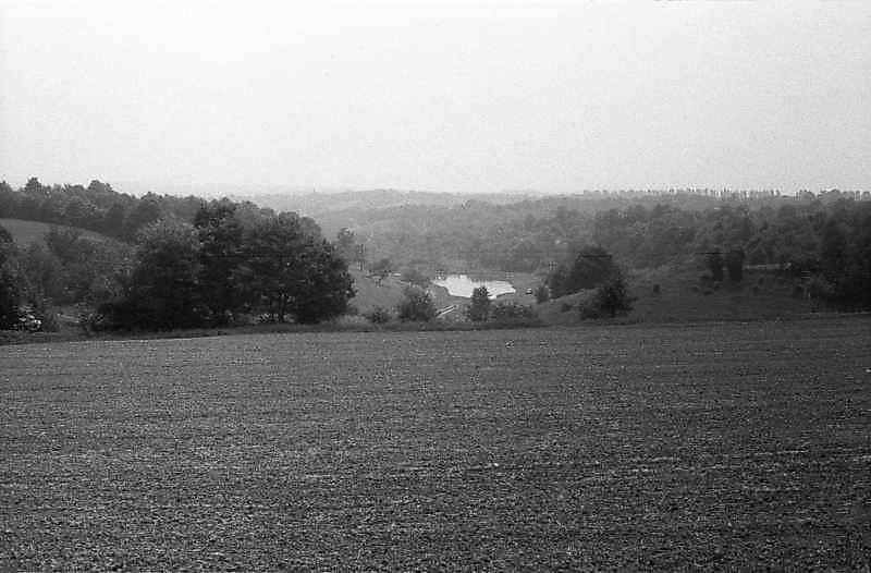 1985 р. Краєвид зі ставком