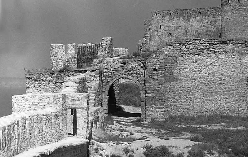 1987 р. Загальний вигляд з південного заходу (ближче – брама 17, далі – цитадель)