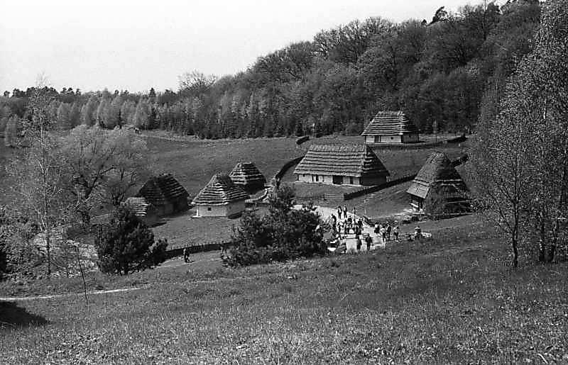 1988 р. Садиби із с.Медведівка, із с.Стричава, хата із с.Сімерки, млин із с.Пилипець