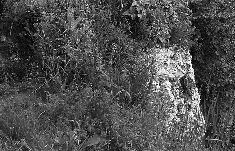 1988 р. Фрагмент мурування (над…
