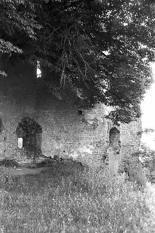 1988 р. Башта. Вигляд з півночі, з боку двора