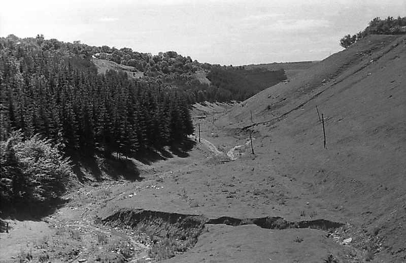 1988 р. Долина між селами Берем'яни і Жнибороди
