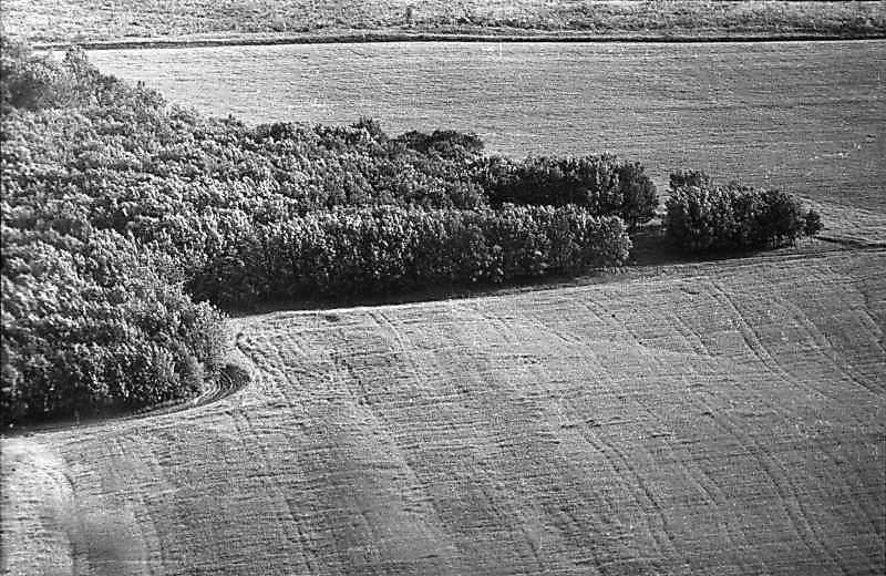 1988 р. Вид з Червоної гори