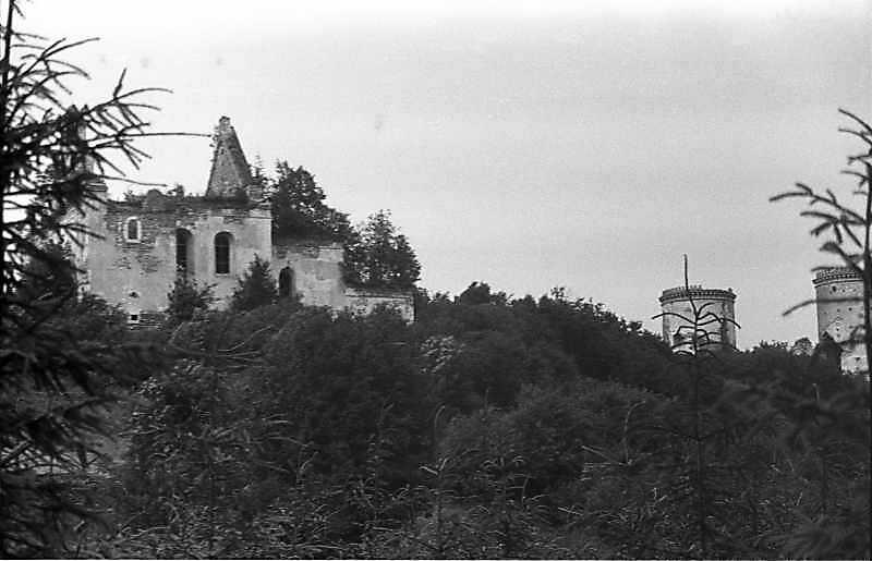1988 р. Костел і палац. Вигляд з півдня