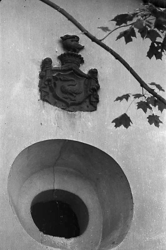 вікно і гербовий щит
