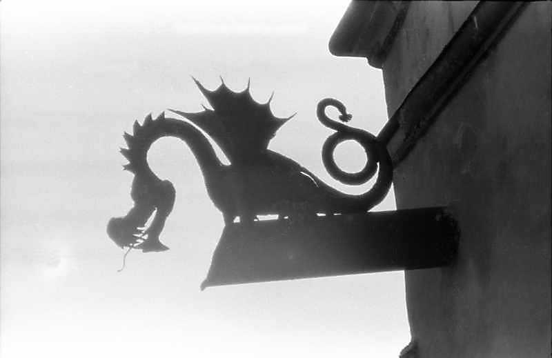1988 р. Загальний вигляд дракона