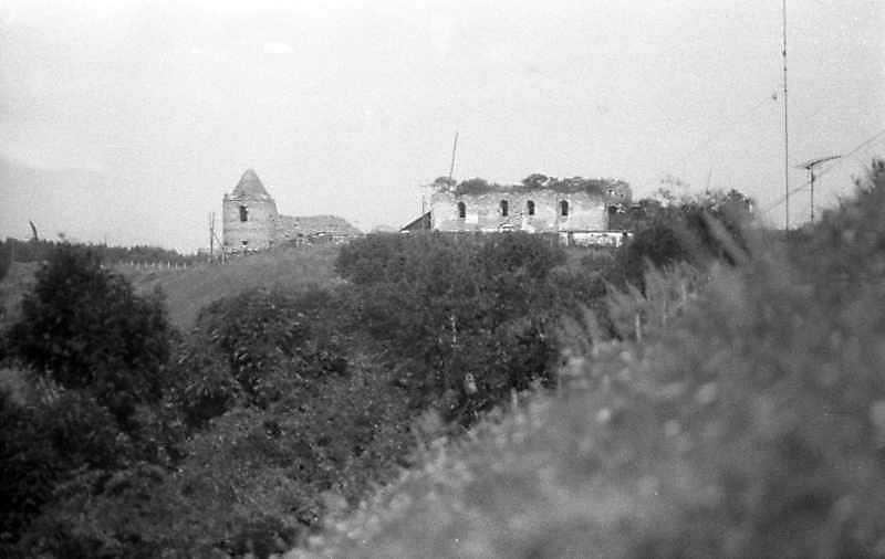 Монастир Підгорянський