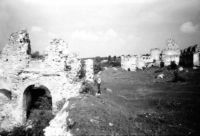 1989 р. Північно-західна частина замку. Вигляд з південного сходу