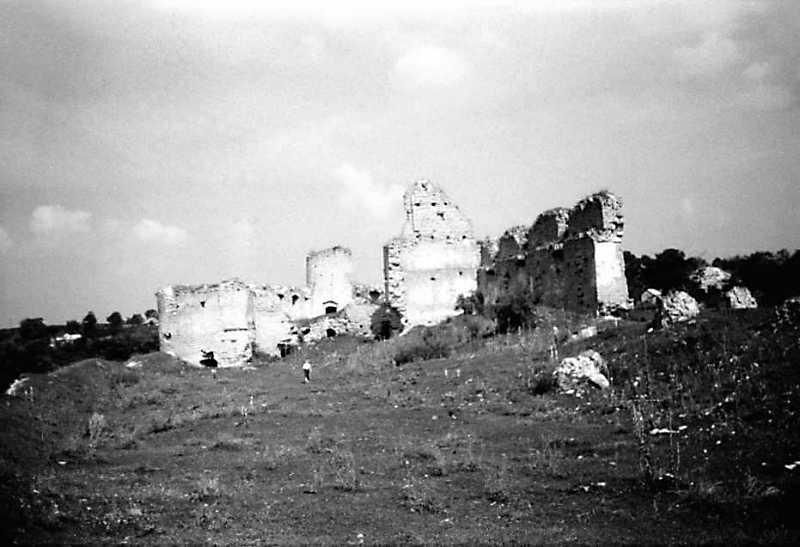 1989 р. Башти 14, 1, корпус 15. Вигляд з південного сходу