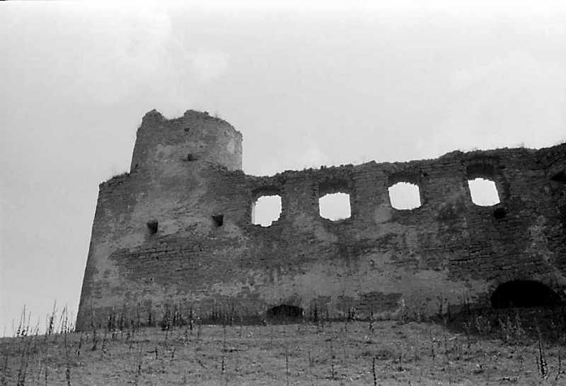 1989 р. Башта 1 і мур палацу. Вигляд…