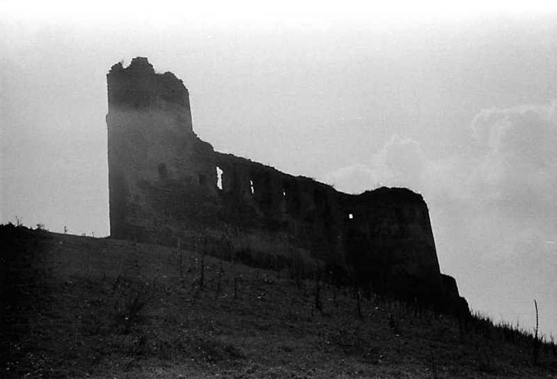 1989 р. Башта 1, мур палацу і башта…