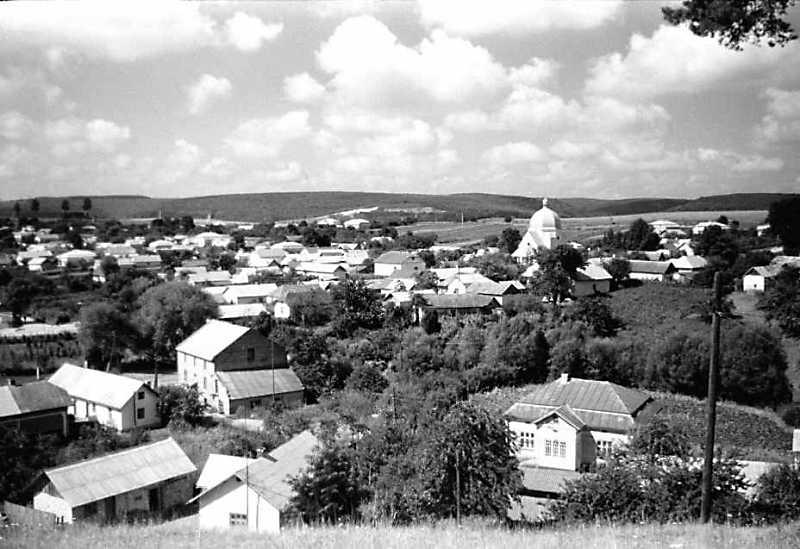 1990 р. Панорама села з новою церквою. Вид від старої церкви, з північного сходу