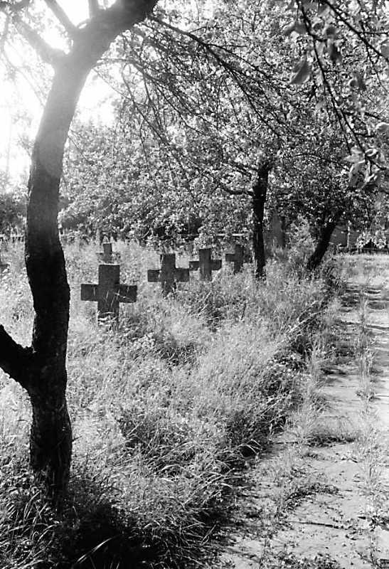 1991 р. Ряд хрестів і алея