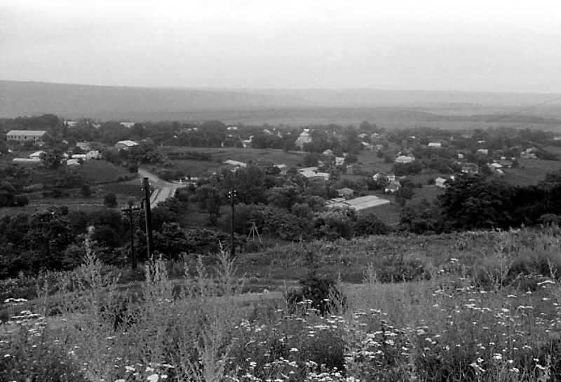 1991 р. Устя. Загальний вид села з…