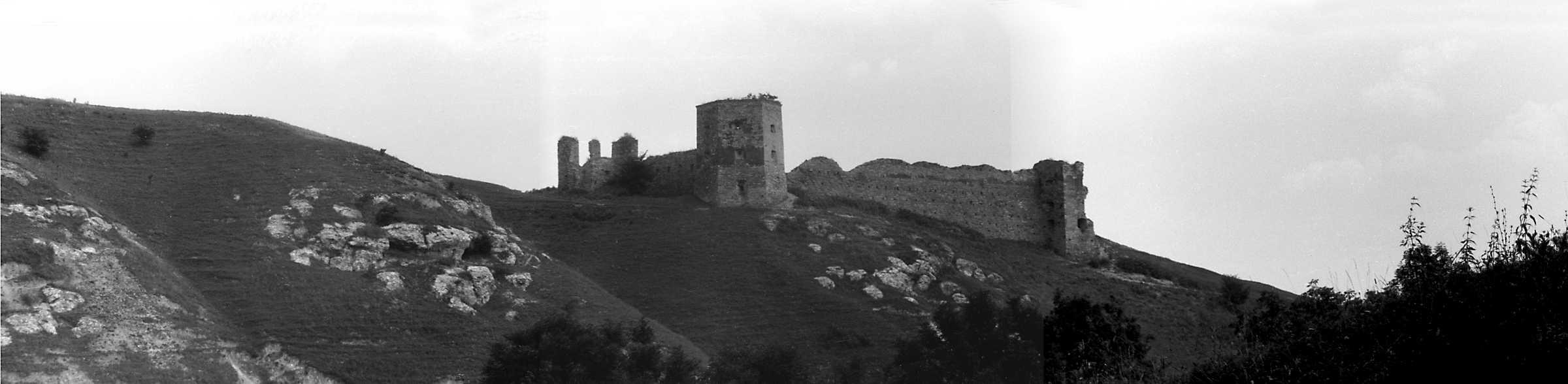 1991 р. Панорама із заходу