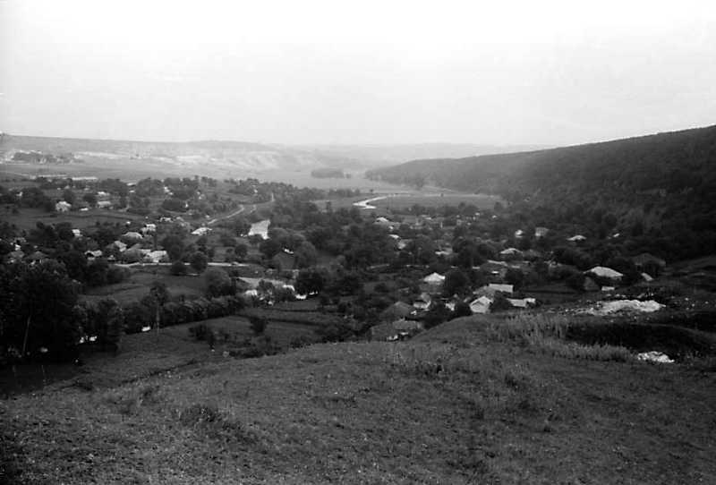 1991 р. Вид від замку на лівобережне село