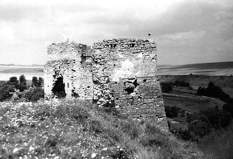 1991 р. Загальний вигляд з південного сходу