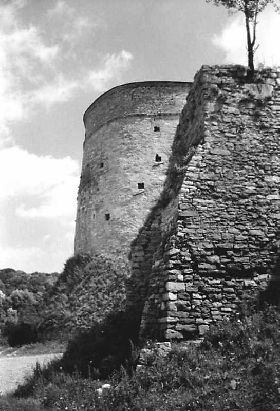 1991 р. Кушнірська і квадратна башти. Вигляд із заходу