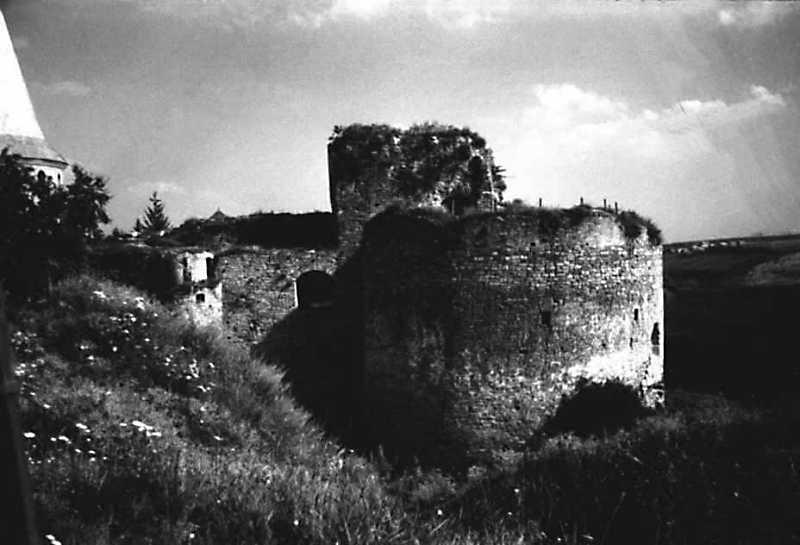 1991 р. Башти Денна та Нова Західна. Вигляд з півночі