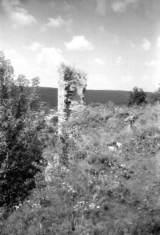 1991 р. Фрагмент муру. Вигляд з півдня