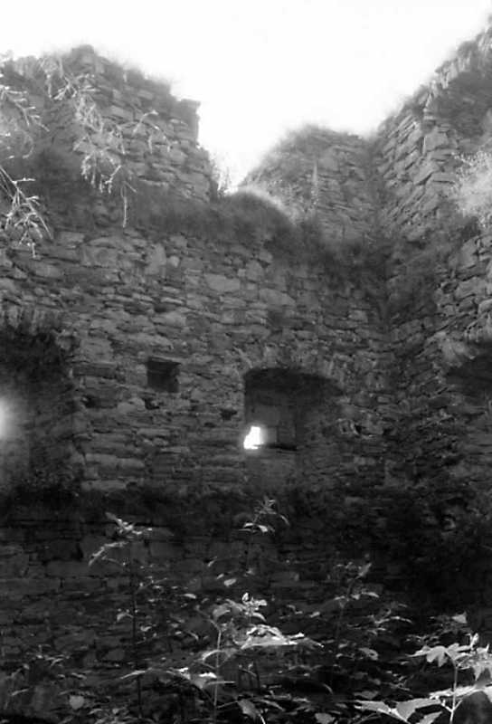 1991 р. Південна башта. Південно-східна стіна в інтер'єрі