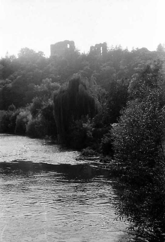 1991 р. Загальний вигляд замку зі…