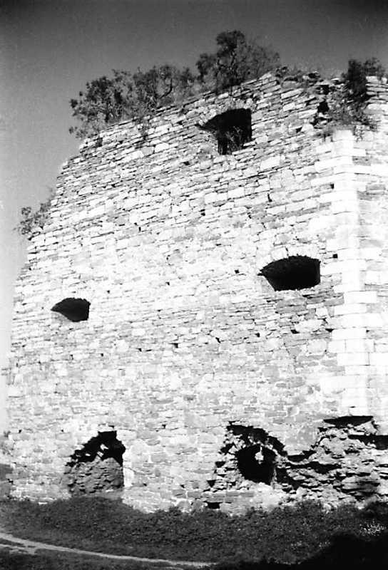 1991 р. Куртина 8. Вигляд з південного заходу