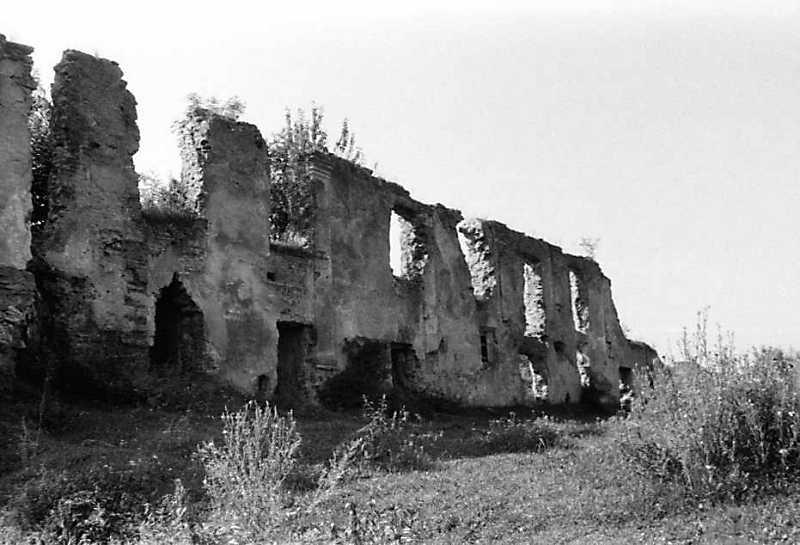 1991 р. Північний фасад палацу. Вигляд з північного сходу