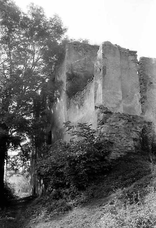1991 р. Східний фасад палацу. Вигляд з північного сходу