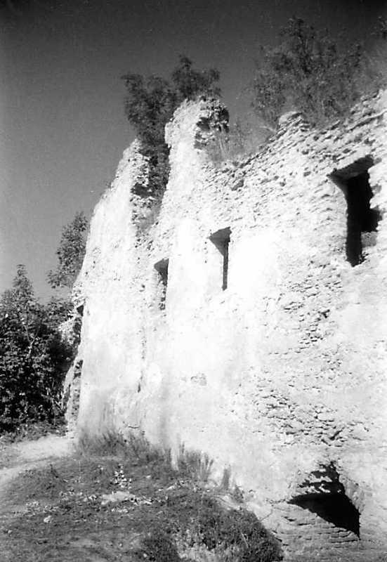 1991 р. Фрагмент південного фасаду палацу. Вигляд з південного сходу