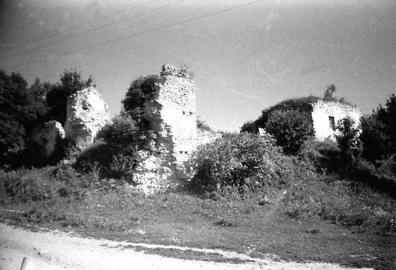 1991 р. Південно-західна башта і західна частина палацу. Вигляд з південного заходу