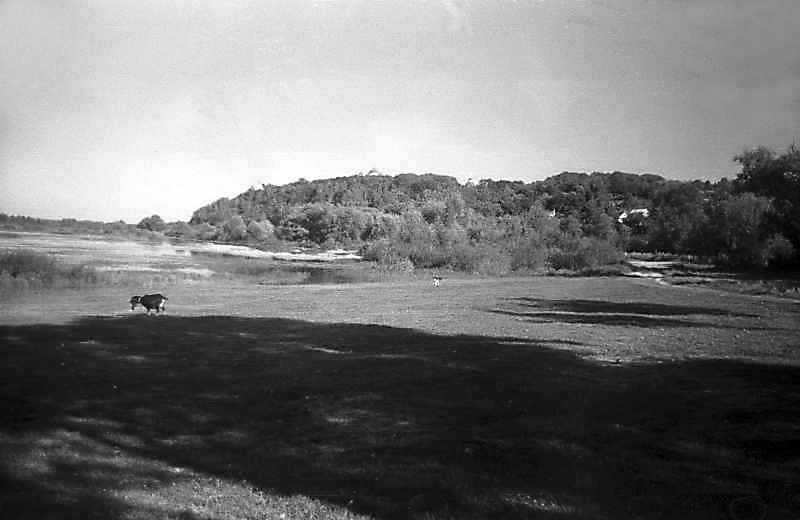 1993 р. Вид Десни і Спаського монастиря