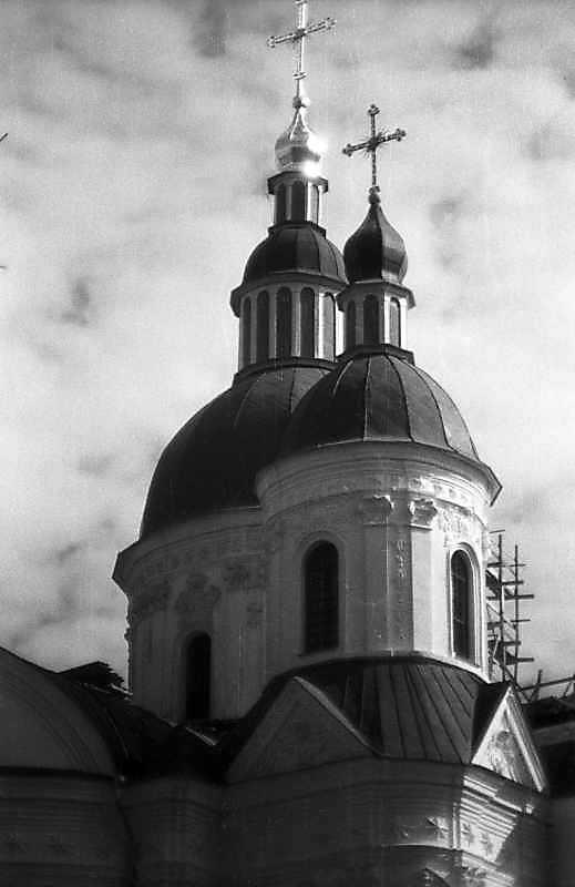 Центральний та південний куполи