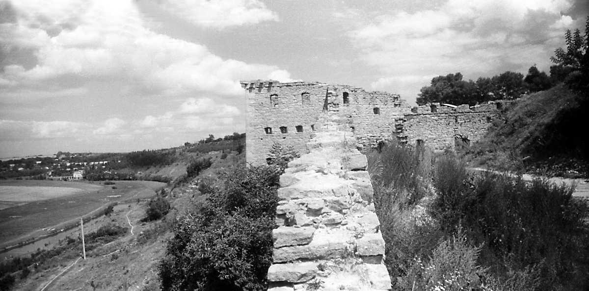 1995 р. Панорама Збруча і замку.…